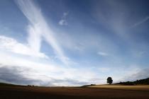 Design Hausnummer, Vier Jahreszeiten, Blick der Sinne, Frühling, Sommer, Herbst, Winter, Herbstlandschaft, Getreide, Landschaftsfotografie