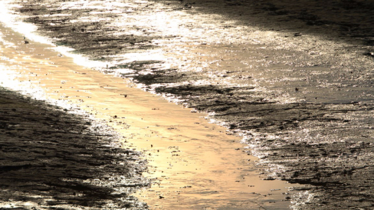 Herbst, Abendsonne, Bachlauf, See, Blick der Sinne, Landschaftsfotografie, Vier Jahreszeiten